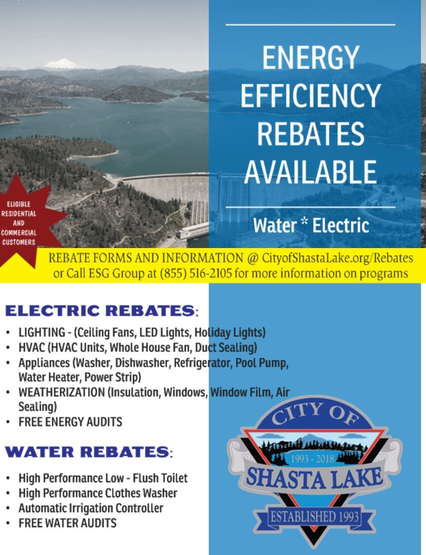 EFFICIENCY REBATE FLYER